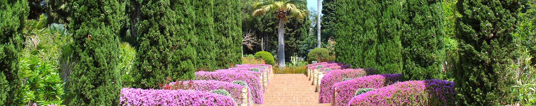 Escales d'Epicur | Jardí Botànic Marimurtra | Fundació Carl Faust