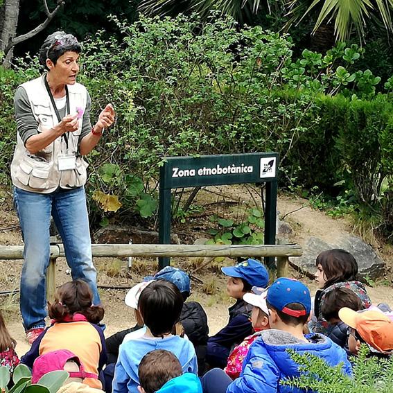 Actdivitats Escoles Jardí Botànic Marimurtra
